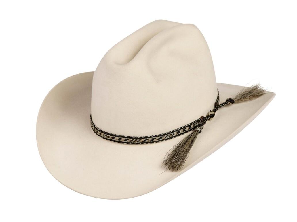 Hernandez Horsehair Double Tassel Hat Band 6115