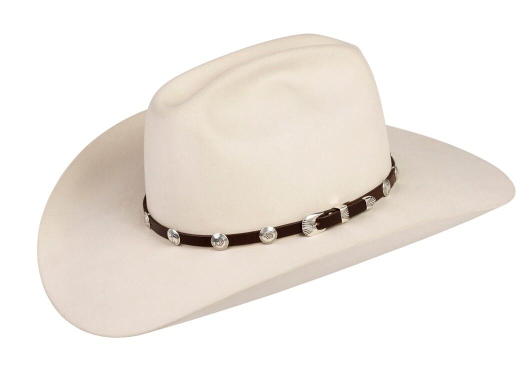 SM3 Small Mimbres Hat Band Silver Mesa