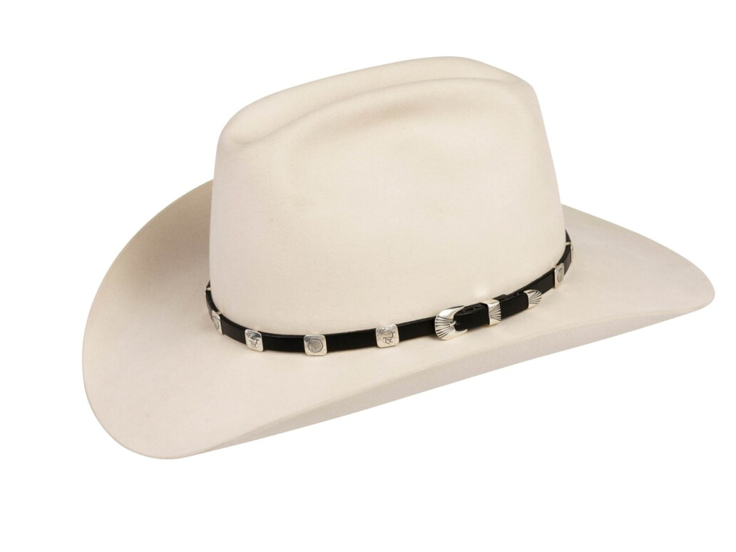 SM2 Prehistoric Rock Designs Hat Band Silver Mesa